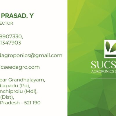Sucseed_Visiting-Card-BS